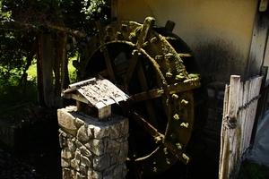 200514_012.jpg