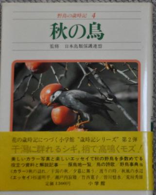 野鳥の歳時記〈4〉秋の鳥