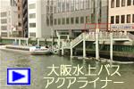 Link_avi_1.jpg