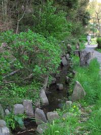小川アメニティ散策路;クリックすると大きな写真になります