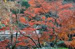本堂への参詣道から福寿院あたり;クリックすると大きな写真になります