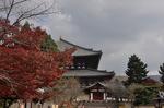 戒壇院横から東大寺を望む;クリックすると大きな写真になります