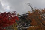 東大寺裏手;クリックすると大きな写真になります