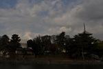 猿沢池からの興福寺五重塔;クリックすると大きな写真になります