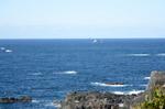 潮岬から太平洋を望む;クリックすると大きな写真になります