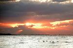 宍道湖の夕日:クリックすると大きな写真になります