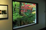 足立美術館の紅葉:クリックすると大きな写真になります