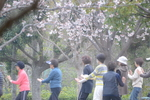 太極拳?:庭代台公園;クリックすると大きな写真になります
