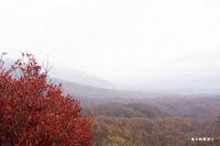 鬼女峠展望台からの紅葉;クリックすると大きな写真になります。