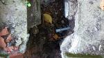 止水栓;クリックすると大きな写真になります