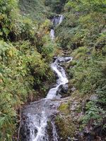福定への林道で見かけた滝;クリックすると大きな写真になります