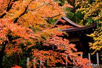 吉田神社松宮社;クリックすると大きな写真になります。