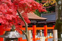 吉田神社社務所前付近;クリックすると大きな写真になります。