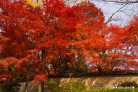 吉田山荘の土塀;クリックすると大きな写真になります。