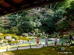 華頂殿前の庭園:青蓮院;クリックすると大きな写真になります。