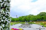 天王寺公園、JR 駅からのアプローチ;クリックすると大きな写真になります。