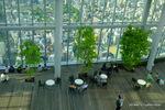 58階は、庭園になっている。;クリックすると大きな写真になります。