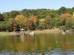 心字池:日本庭園;クリックすると大きな写真になります