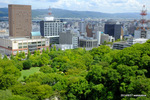 お城は、和歌山市の真ん中にある;クリックすると大きな写真になります。