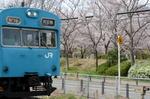 天王寺行き普通電車;クリックすると大きな写真になります