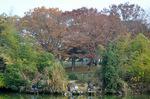 東谷池;クリックすると大きな写真になります