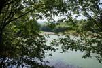 コウノトリが飛来していた内田池;クリックすると大きな写真になります。