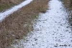 農道に雪がうっすらと;クリックすると大きな写真になります。