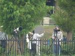 大泉緑地のカメラマン:クリックすると大きな写真になります