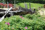廃船となった伝馬船:クリックすると大きな写真になります
