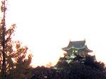 大阪城:クリックすると大きな写真になります