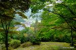 多宝塔下から麓の村落を見る:高源寺;クリックすると大きな写真になります。