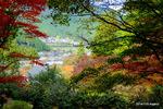 多宝塔あたりから下の村落を眺める:高源寺(丹波);クリックすると大きな写真になります。