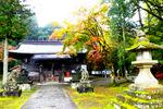 本殿:養父神社(兵庫);クリックすると大きな写真になります。141106_004.jpg