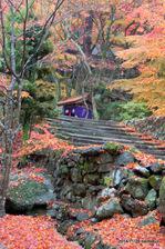 多宝塔への参道:大威徳寺(岸和田);クリックすると大きな写真になります。