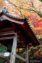 鐘楼:大威徳寺(岸和田);クリックすると大きな写真になります。