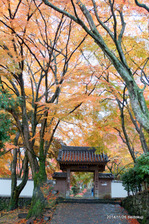 山門:大威徳寺(岸和田);クリックすると大きな写真になります。