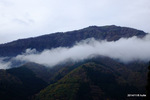 氷ノ山にかかった靄:鉢伏(兵庫);クリックすると大きな写真になります。