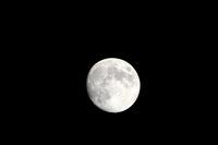 9月28日: 19:32;クリックすると大きな写真になります