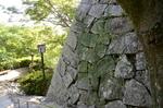 古い石垣:唐津城;クリックすると大きな写真になります