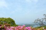 北九十九島:長串山公園;クリックすると大きな写真になります