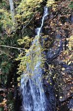 林道脇の滝;クリックすると大きな写真になります