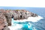 城ヶ崎海岸:クリックすると大きな写真になります