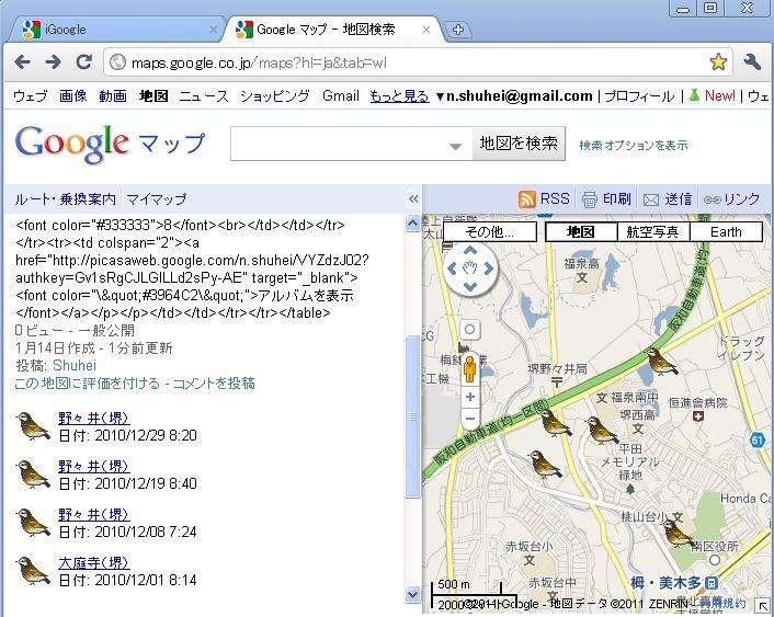 birdsplot_09.JPG