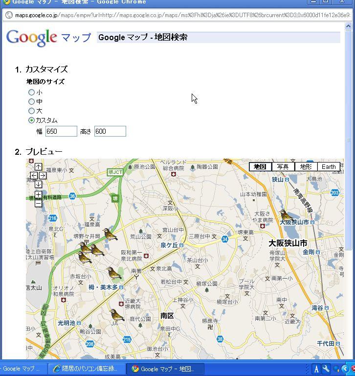 birdsplot_11.JPG