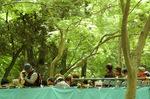 下鴨神社有料観覧席;クリックすると大きな写真になります