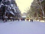 北海道神社;クリックすると大きな写真になります