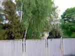 塀に囲まれた収容所長・ヘスの自宅;クリックすると大きな写真になります