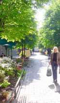 マレ地区の小路;クリックすると大きな写真になります。