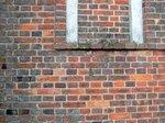 イギリス積みの煉瓦。黒いのが地元製:クリックすると大きな写真になります