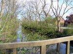 自然豊かなリーベ河;クリックすると大きな写真になります
